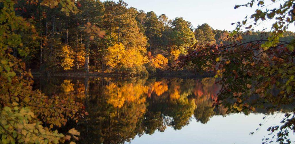 Carrollton, Georgia – Mareia Richardson Agency / Mareia Richardson